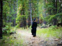 Послушање духовнику – где је граница наше личне одговорности?