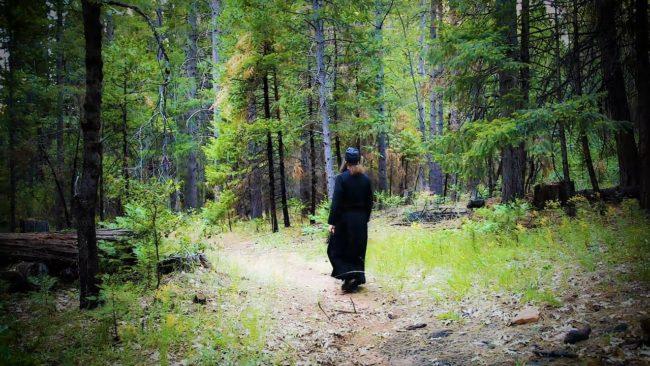 Poslušanje duhovniku – gde je granica naše lične odgovornosti?